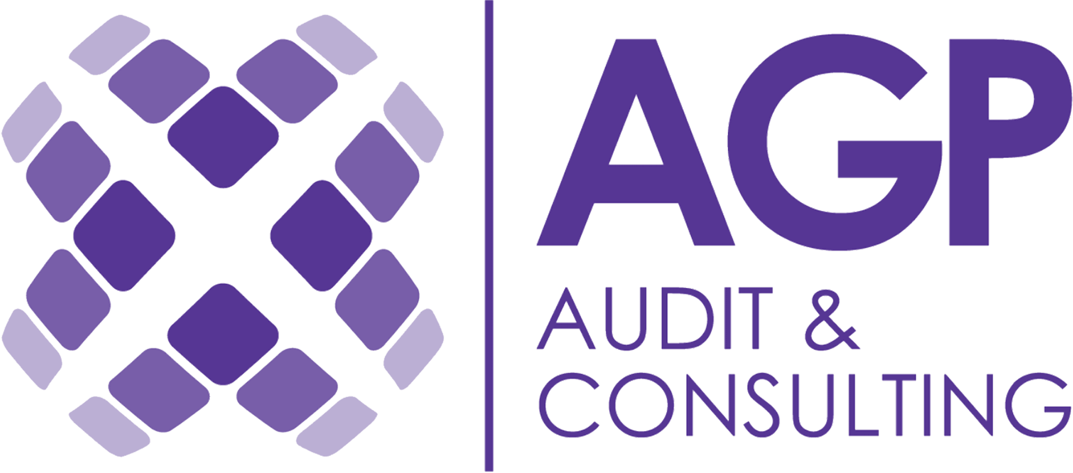 A.G.P Audit & Consulting Services Ltd